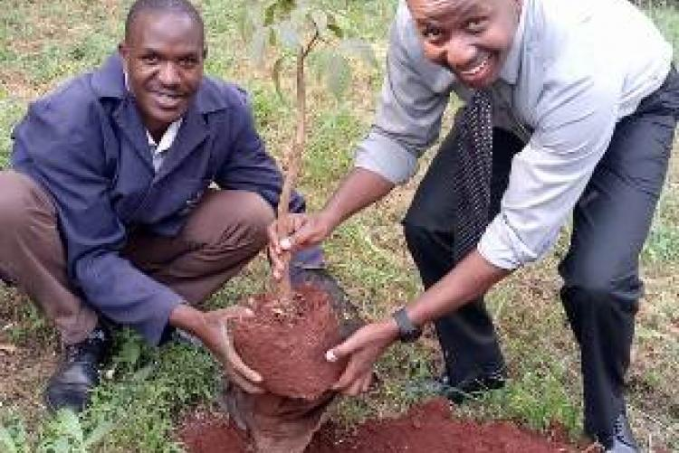 Dr. Muthii Participate with fellow staff in tree planting