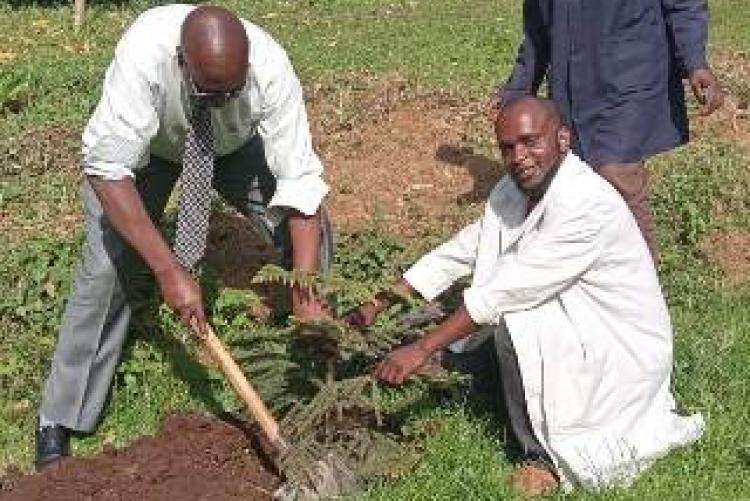 UHS Register MR. Gathuka and Office Assistants participate in planting a tree
